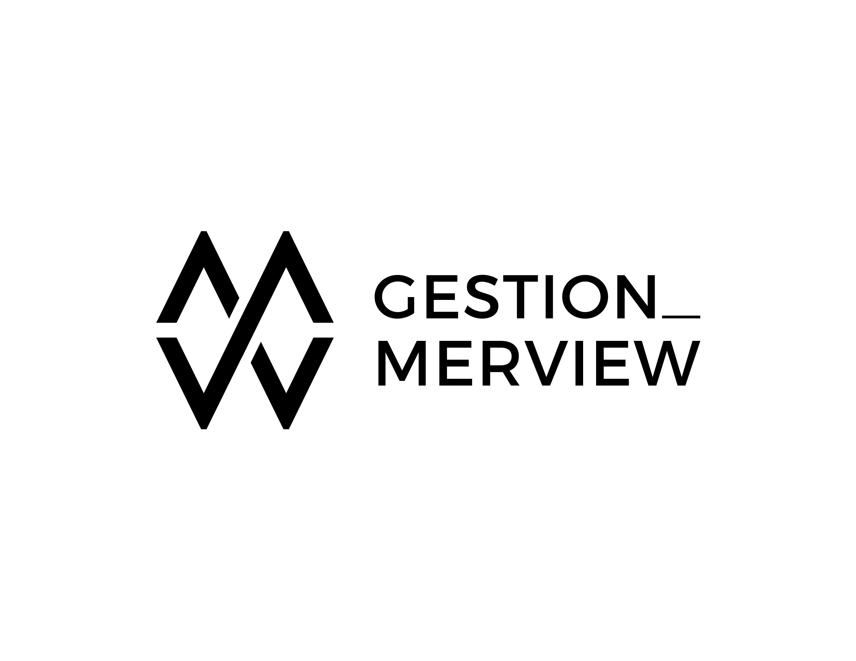Logo Gestion Merview